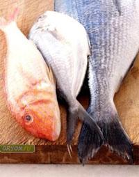Рыба может содержать опасные паразиты!